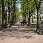 Path in City Garden park in Kiev, Ukarine