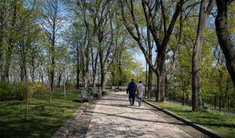 Tree-lined path in Khreshchatyk Park, Kiev.