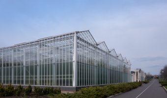Big greenhouse at Mezhyhirya National Park, the former home of Viktor Yanukovych, ex-President of Ukraine.