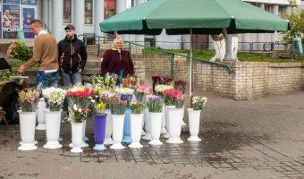 Babushka (old woman) selling flowers outside Arsenalna Metro Station in Kiev, Ukraine.